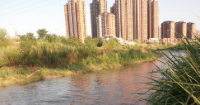 皇家国际浐河边早上6点有市民开嗓惊扰住户 管委会:将加大巡查力度